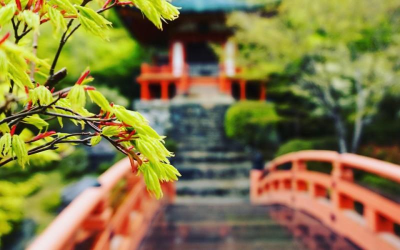 A garden close to Kyoto